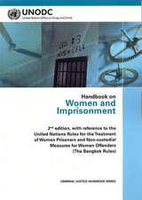 Handbook on Women and Imprisonment:  2nd Edition - With Reference to the Un Rules for the Treatment of Women Prisoners and Non-Custodial Measures for W