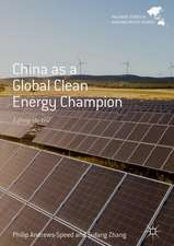 China as a Global Clean Energy Champion: Lifting the Veil