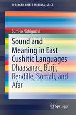 Sound and Meaning in East Cushitic Languages: Dhaasanac, Burji, Rendille, Somali, and Afar