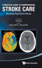 Practical Guide to Comprehensive Stroke Care, A:  Meeting Population Needs