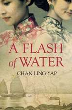 A Flash of Water:  The Man and His Ideas